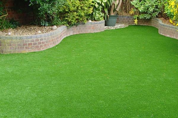 Thảm cỏ đẹp 2
