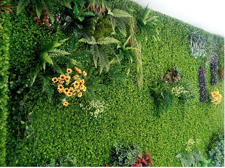 Thảm cỏ đẹp 3