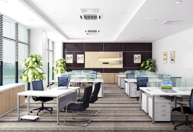 Thảm văn phòng đẹp 4